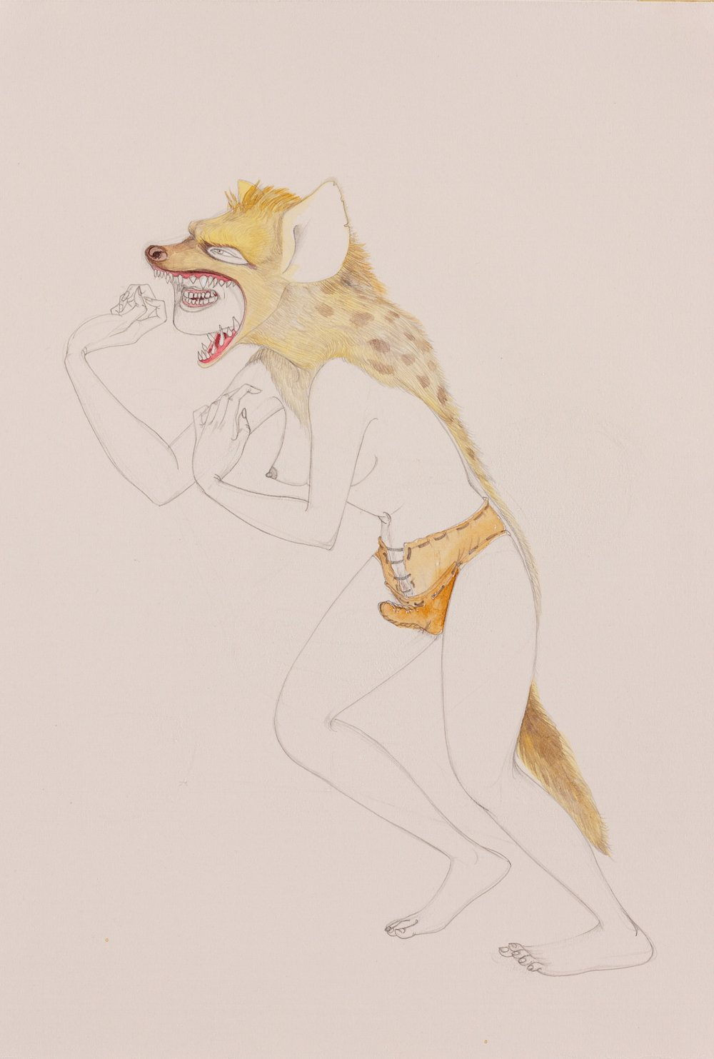 Hyena , 2010 Graphite, watercolor on ivory paper 19.5 x 13 inches Created while in residency at the Contemporary Museum, Honolulu, HI