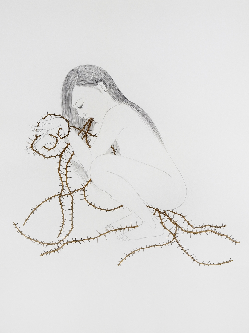 Thorny Girl , 2007 Graphite, collage, chalk on paper 50 X 38 inches Private Collection