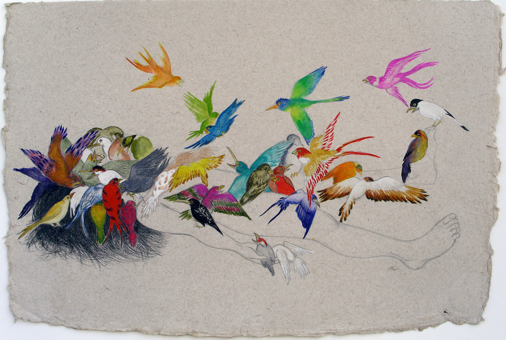 Bird Feed , 2007 Graphite, ink and watercolor on handmade Indian paper 22 x 30 inches Private collection