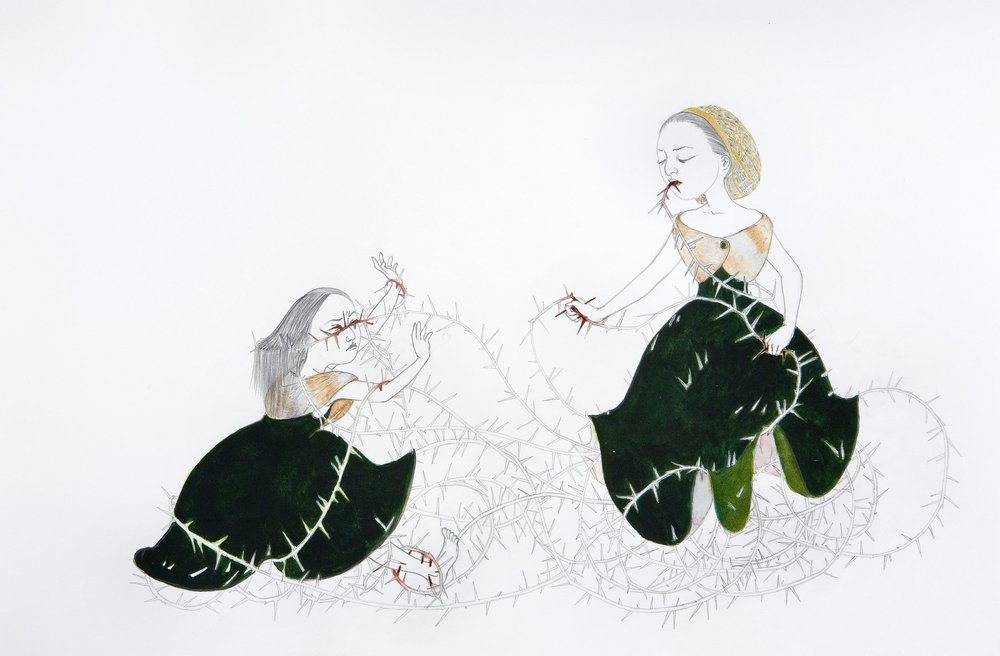 Briar,  2007 Graphite, ink and watercolor on Folio paper 12.5 x 19 inches