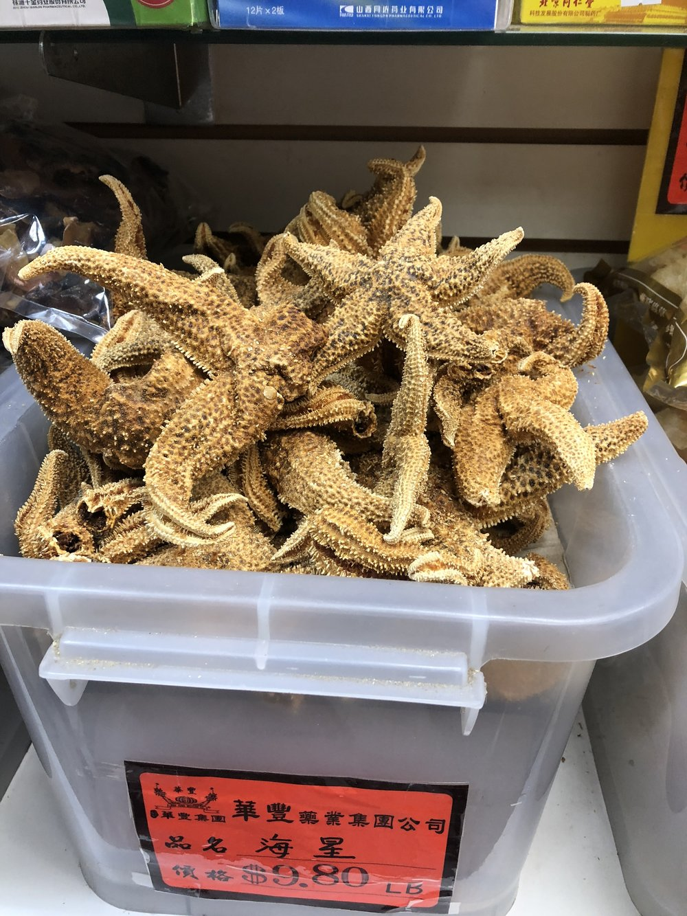 Dried starfish in a Chinese medicine store. Flushing, Queens.