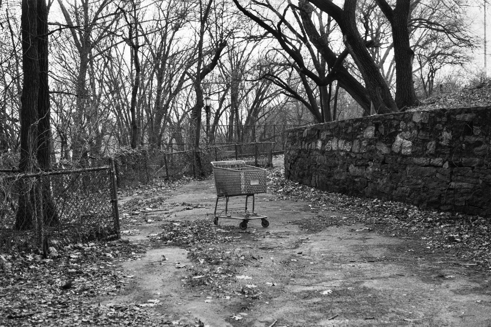 Highbridge Park. Washington Heights, Manhattan.  Details :  film, 35mm Ilford Delta 400. Pentax K1000. Fletcher Berryman, 2018.