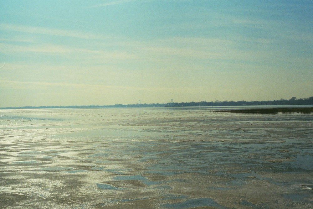A frozen Eastchester Bay. The Bronx.  Kodak Ultra Max 400. Pentax K1000. Fletcher Berryman 2019.