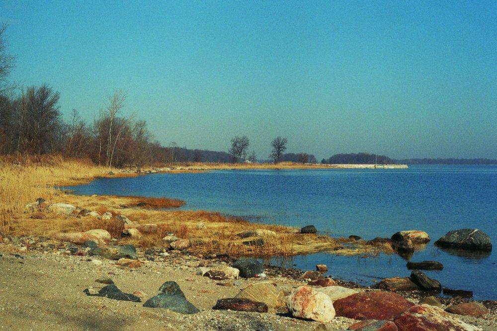 Coastline of Pelham Bay Park on Long Island Sound.  Kodak Ultra Max 400. Pentax K1000. Fletcher Berryman 2019.