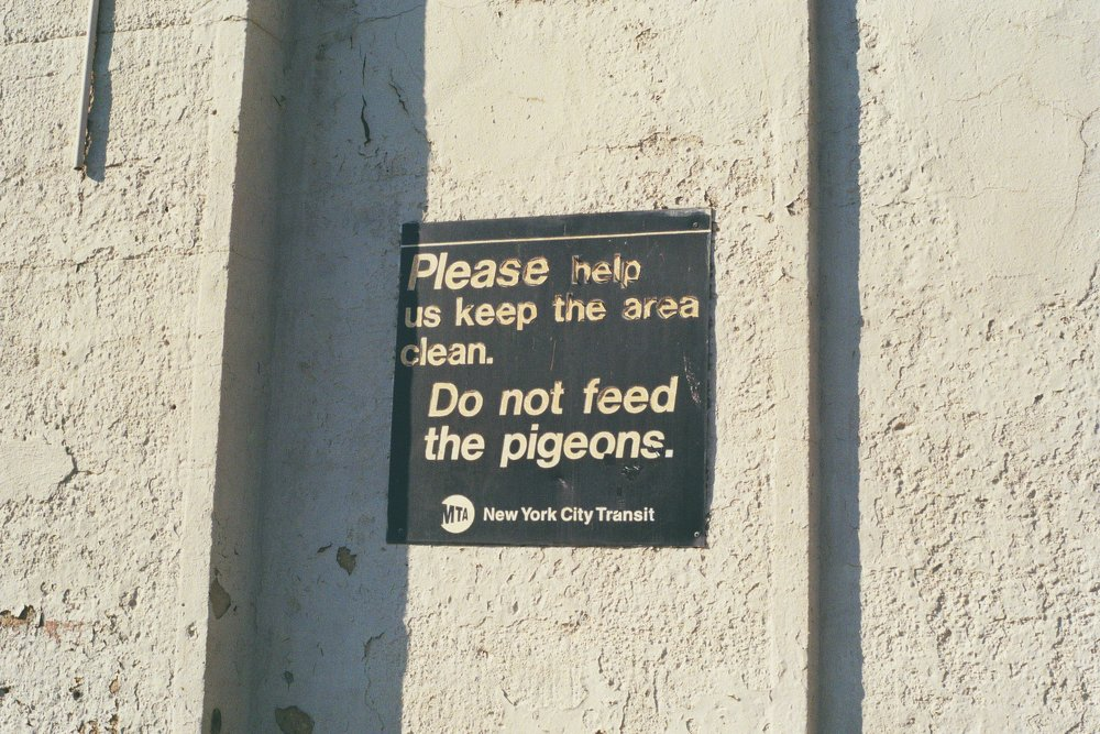 Don't feed the pigeons. Pelham Bay Park Station.  Kodak Ultra Max 400. Pentax K1000. Fletcher Berryman 2019.