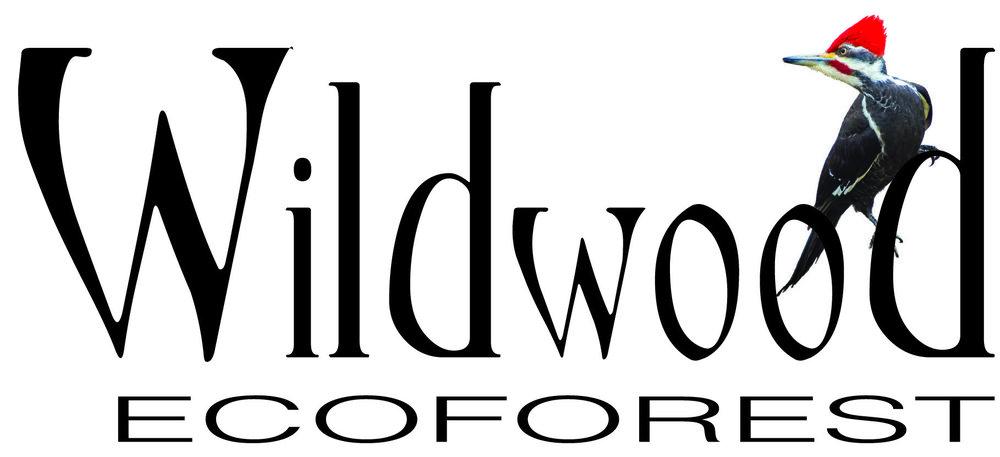 Wildwood Logo 3.jpg