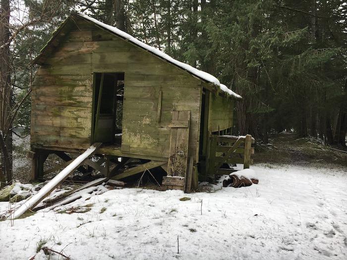 snow-coop1-copy.jpg