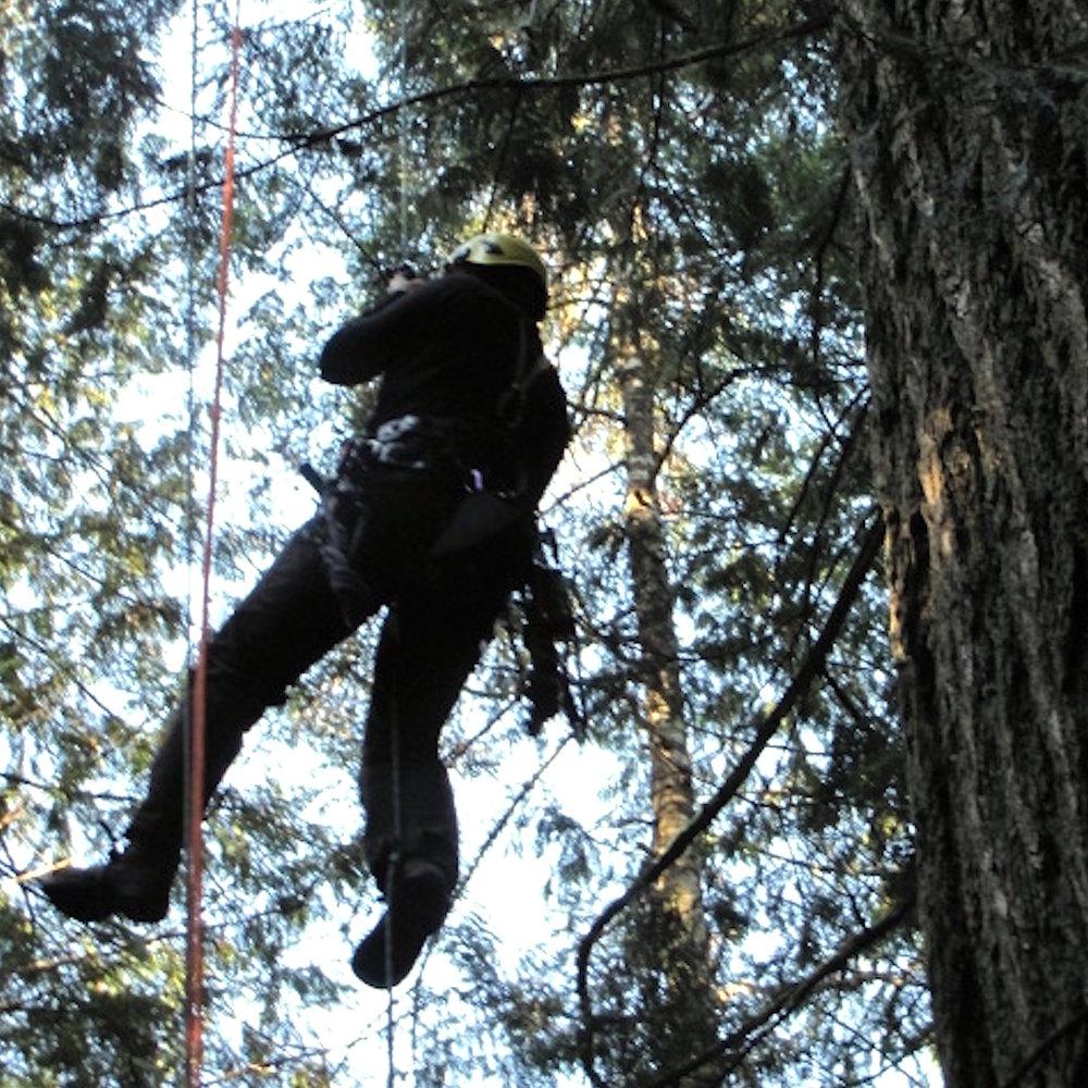 canopy-climb.JPG