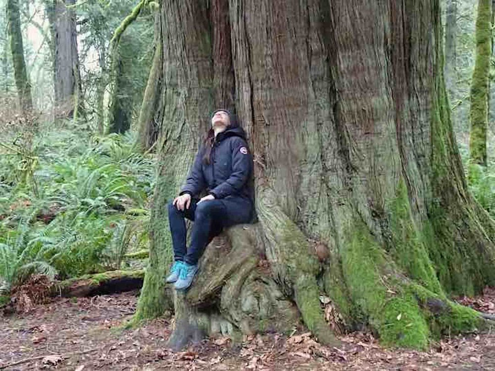 Marie Zahn at the foot of a great cedar