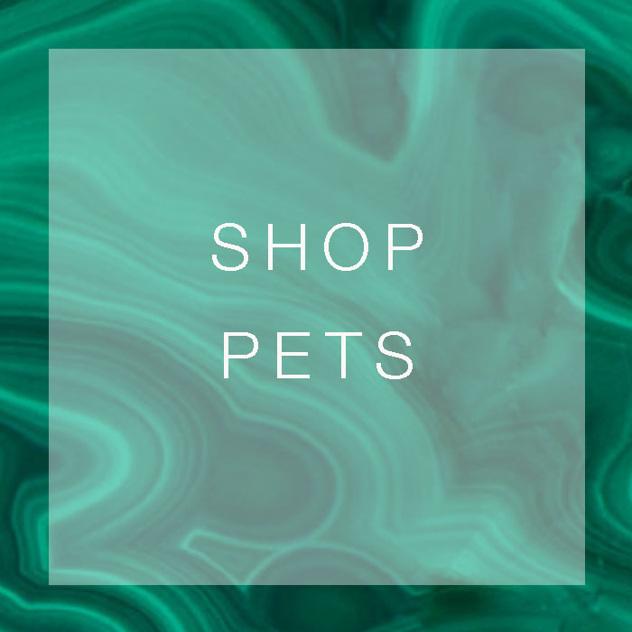 SHOP PETS.jpg