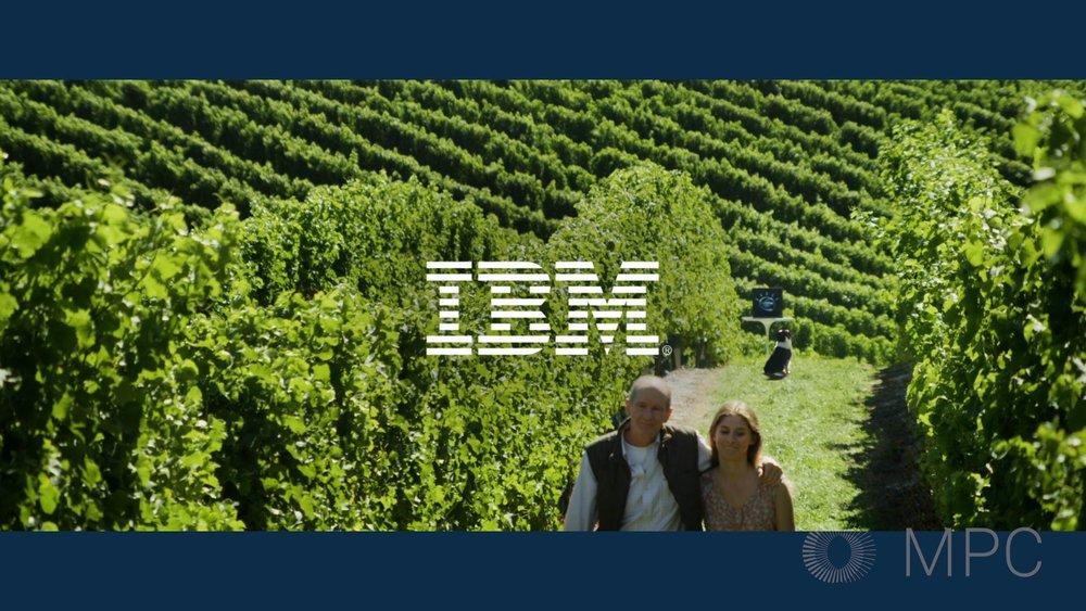 IBM_08.jpg