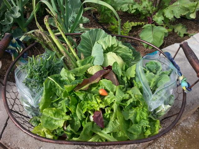 epic-salad-01-20160321_091940.jpg