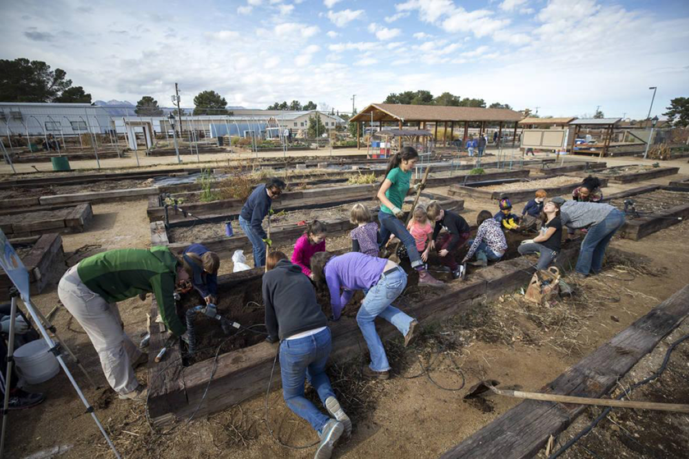 A group of volunteers helps to clean the soil in a garden bed in preparation for early spring planting during a volunteering event at the San Miguel Community Garden located at 3939 Bradley Road in Las Vegas on Saturday, Jan. 12, 2019. Richard Brian Las Vegas Review-Journal @vegasphotograph