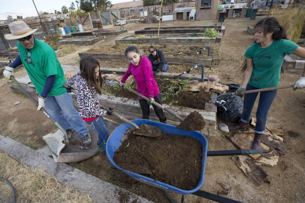 Farmer Joe Lecek, from left, Presleigh Bedard, 10, Rebecca Anderson, 9, and Vanessa Portillo, executive director of the Garden Farms Foundation, load up a wheelbarrow with vermicompost during a volunteering event at the San Miguel Community Garden located at 3939 Bradley Road in Las Vegas on Saturday, Jan. 12, 2019. Richard Brian Las Vegas Review-Journal @vegasphotograph