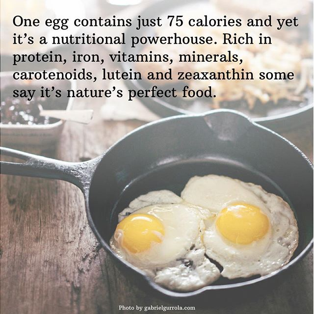 Here's to eggs!