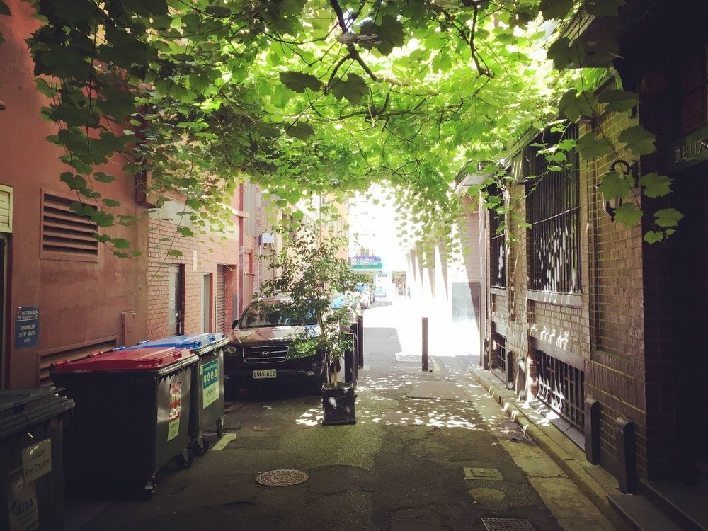 IMAGE_A_Day_in_an_alleyway.jpg