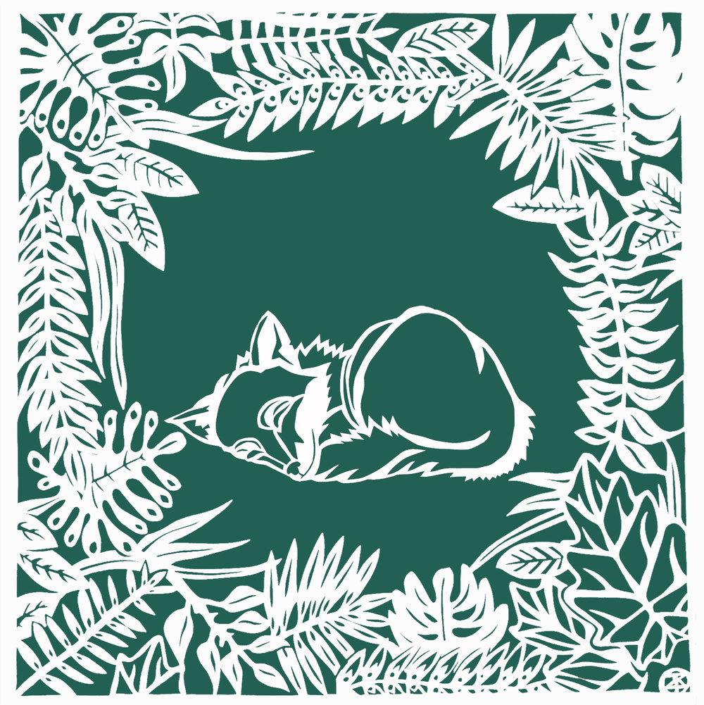 Baby fox in jungle