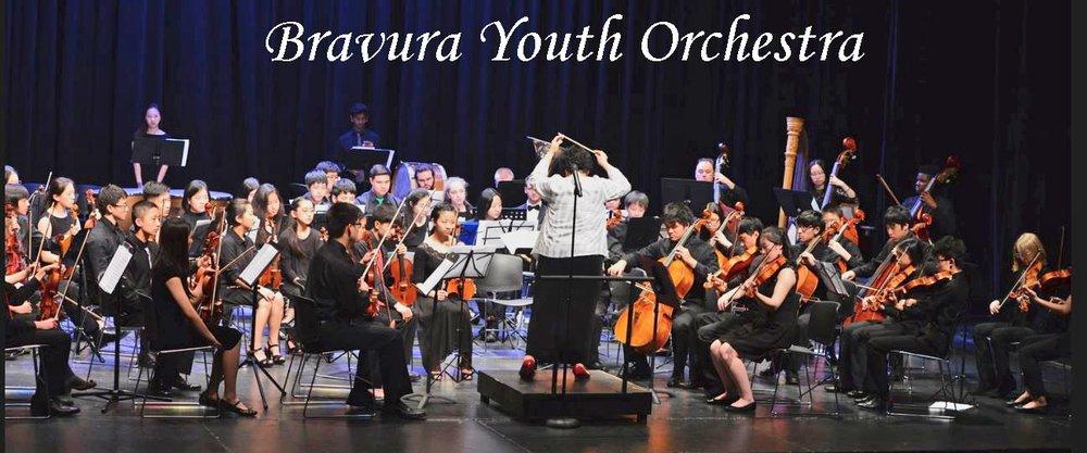 Bravura Youth Orchestra.JPG