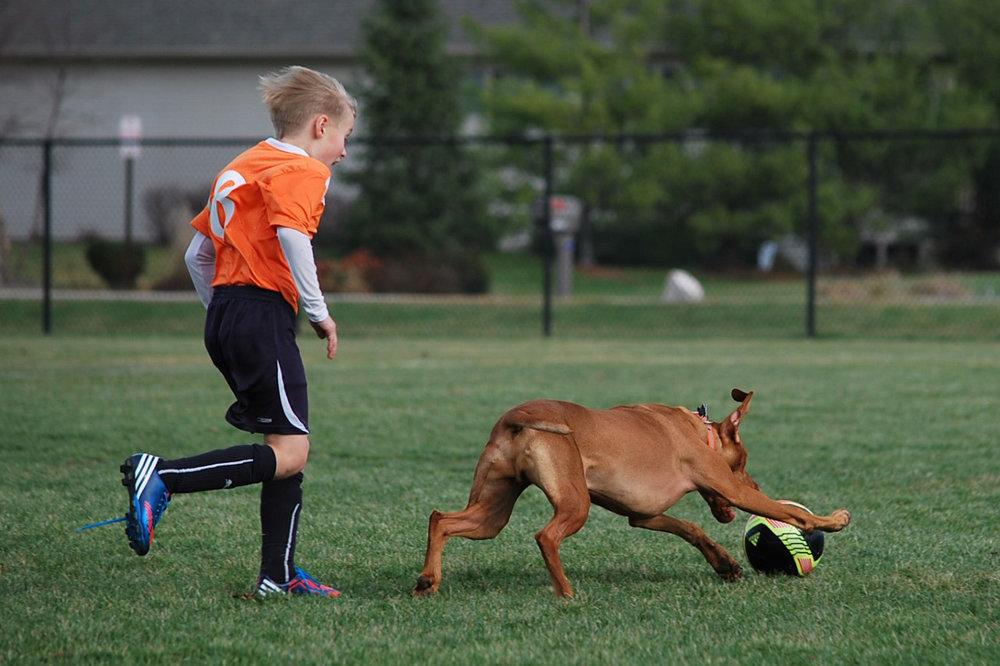 Stealing a soccer ball