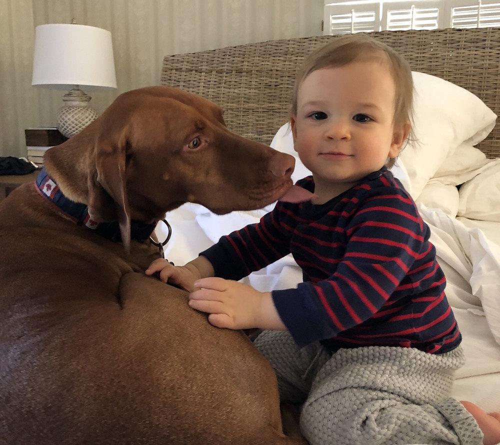 Viszla and baby friend