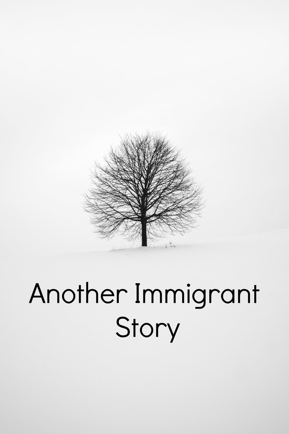 Another Immigrant Story