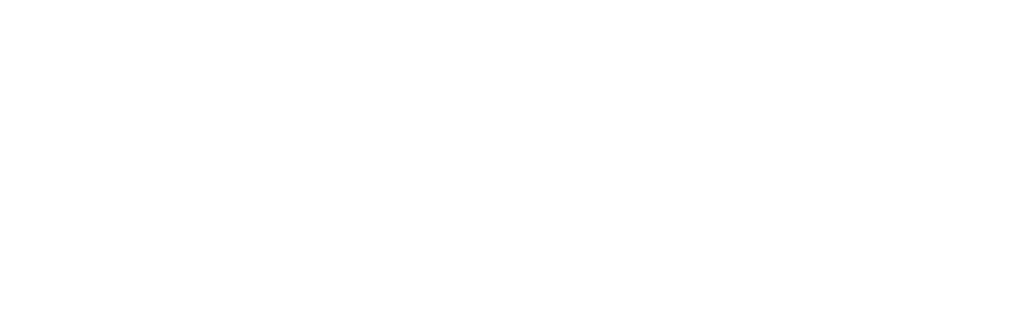 THE SIX FIGURE CODER