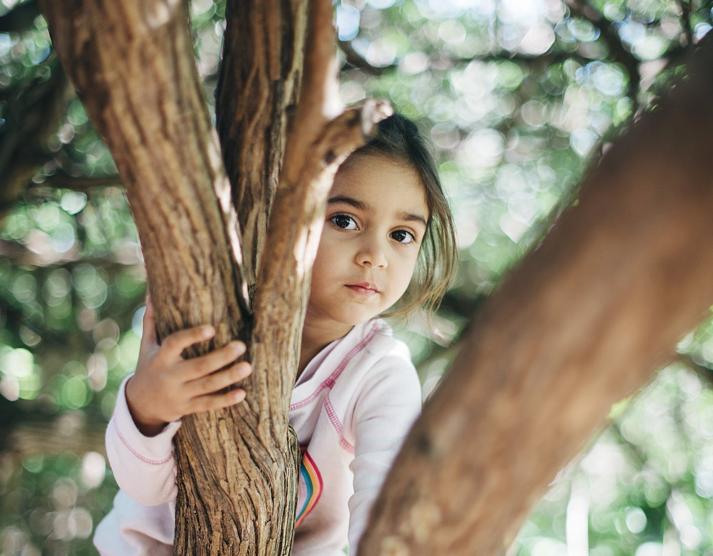 preschool child climbing tree s.jpg