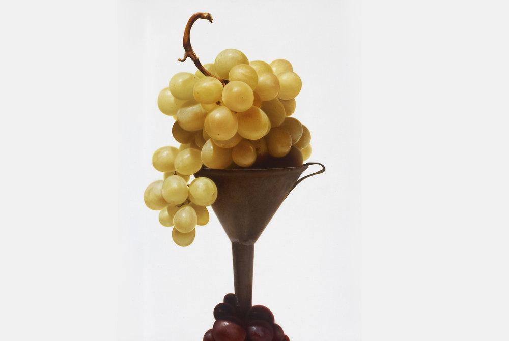 Salvatore Mammoliti, Uva con imbuto, olio su tela 70x50.jpg