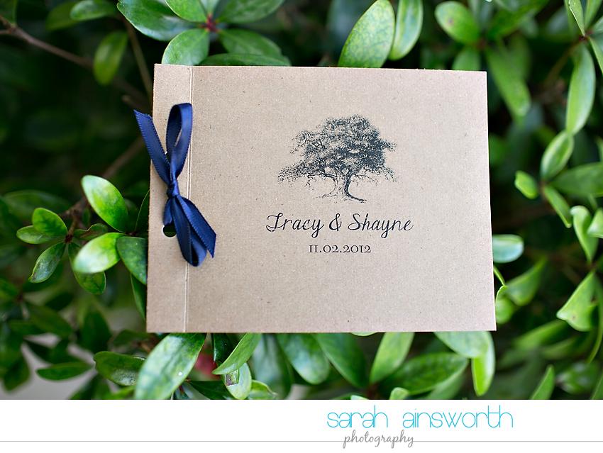 houston-wedding-photographer-briscoe-manor-wedding-tracy-shayne02