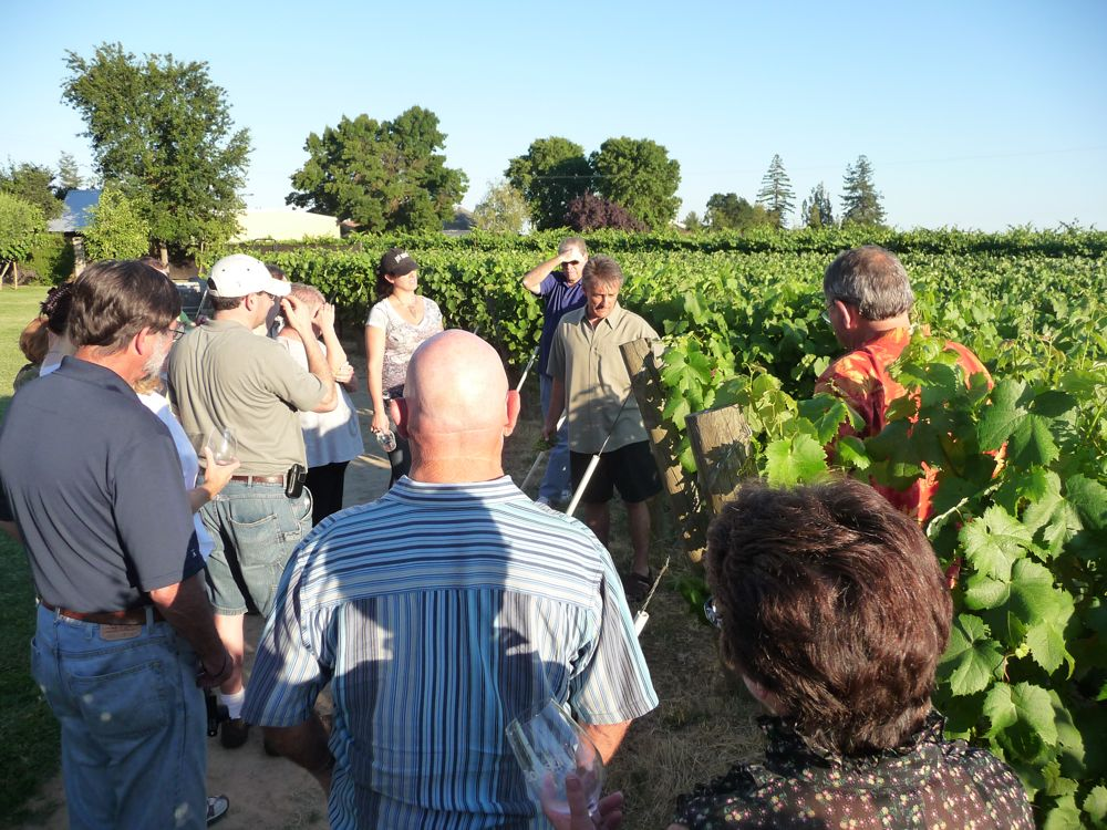 Vineyard trek through Bokisch Vineyards with Markus Bokisch (center, brown shirt)