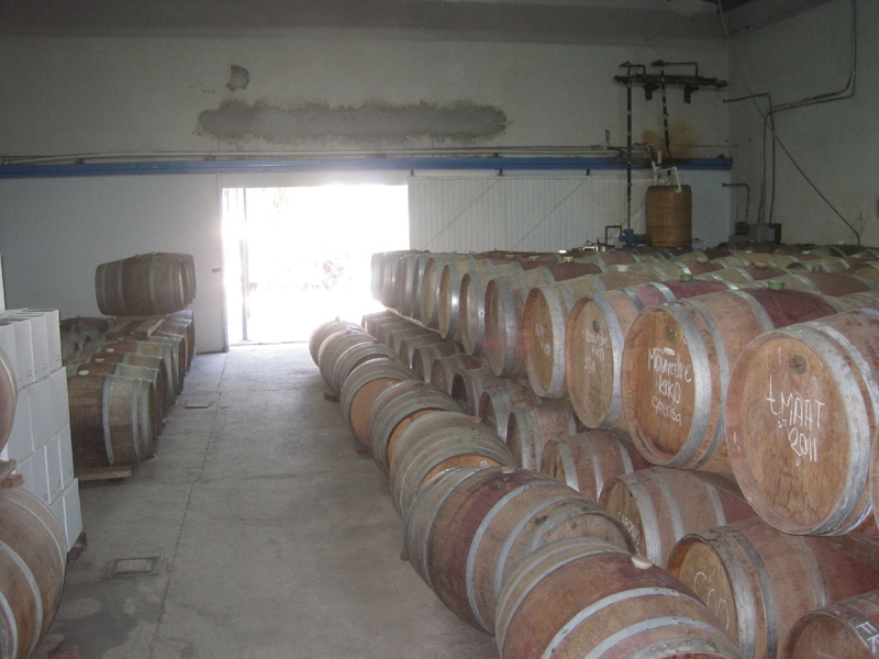 Barrel room at Cavas Valmar