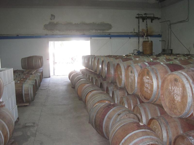Barrel room at Cavas Valmar
