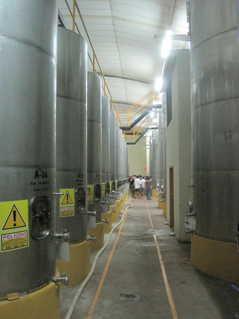 Fermentation tanks at Casa Domecq