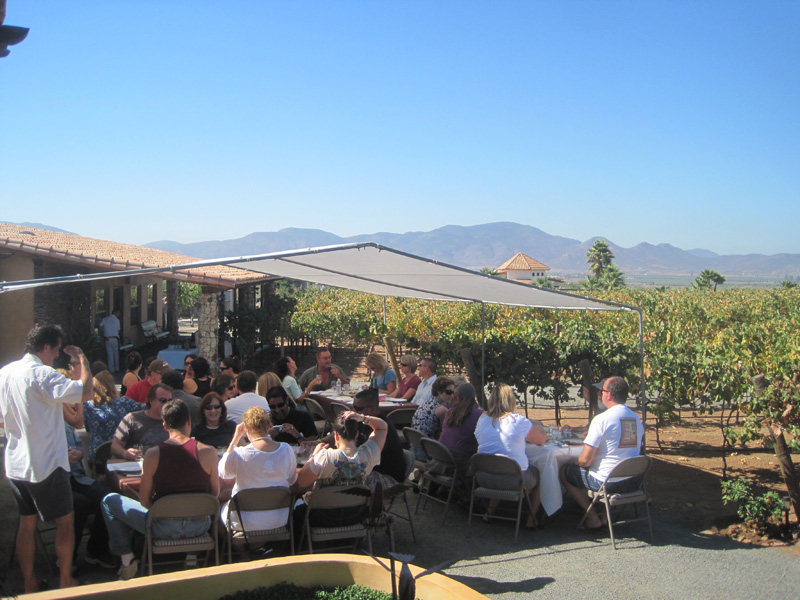 Lunch at Lechuza Vineyards