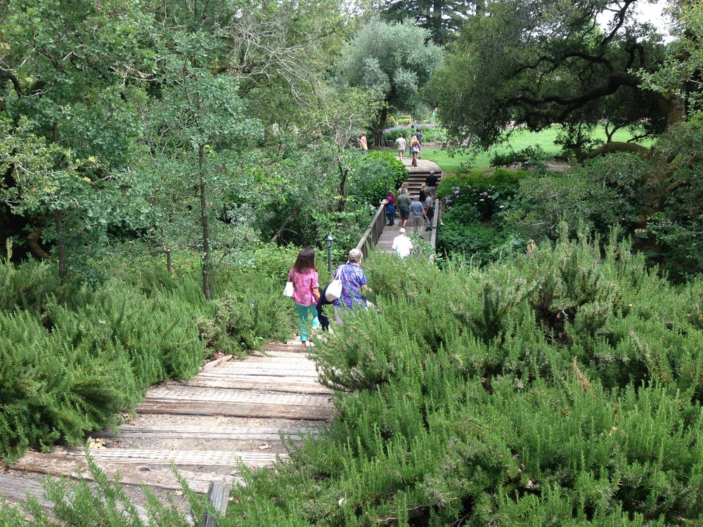 Walking across the old foot bridge (wine in hand, of course) at Alexander Valley Vineyards.