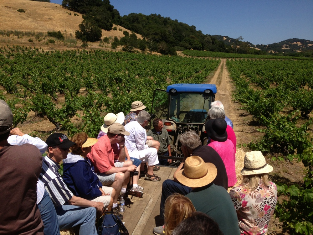Tractor ride with Uncle Freddy through the old vine Zinfandel.