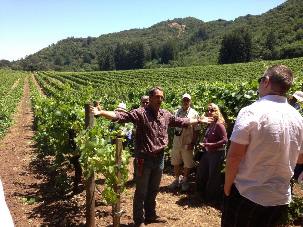 Ulysses Van Der Kamp explaining pruning techniques in his Van Der Kamp Vineyard on Sonoma Mountain.