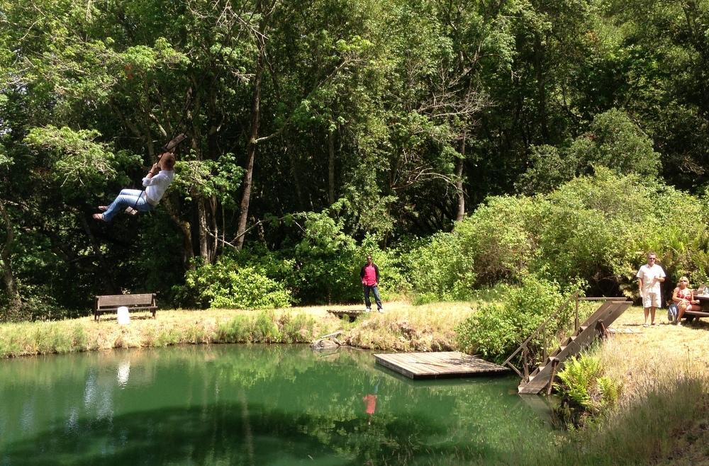 Swinging over the pond at Van der Kamp Vineyards
