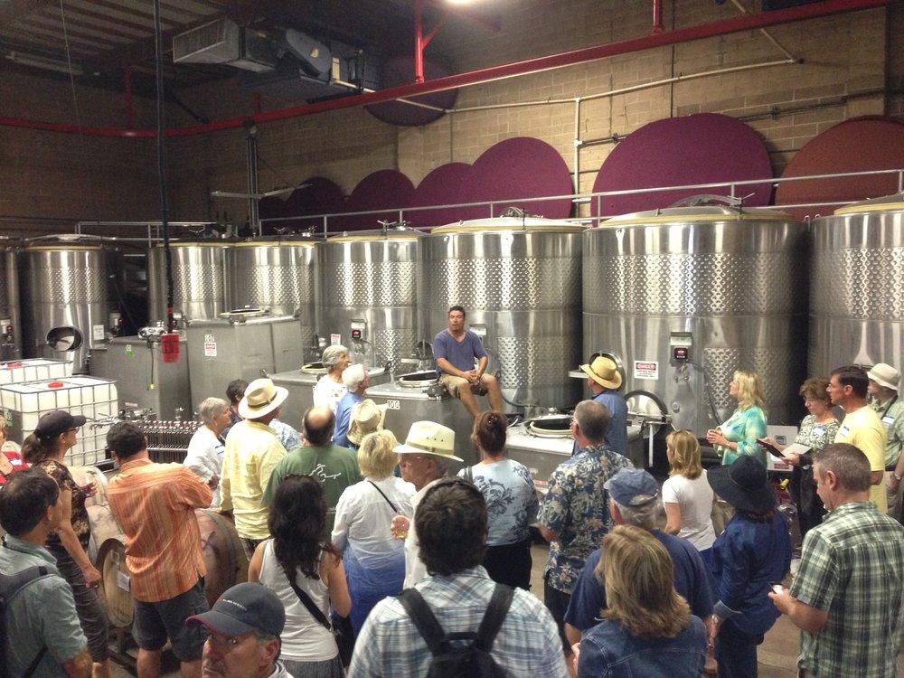 Winemaker Paris Driggers of Sika Wines