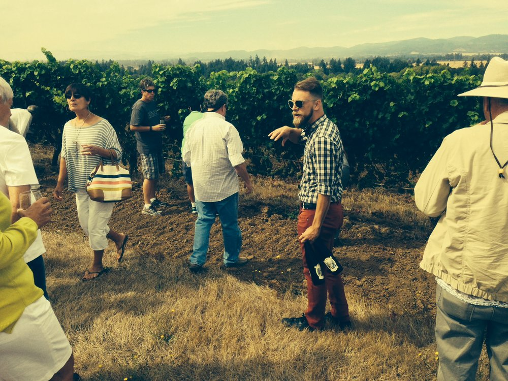 Tasting old vine Riesling from the bottle ... and then tasting the same grapes off the vine with Luke at Anne Amie