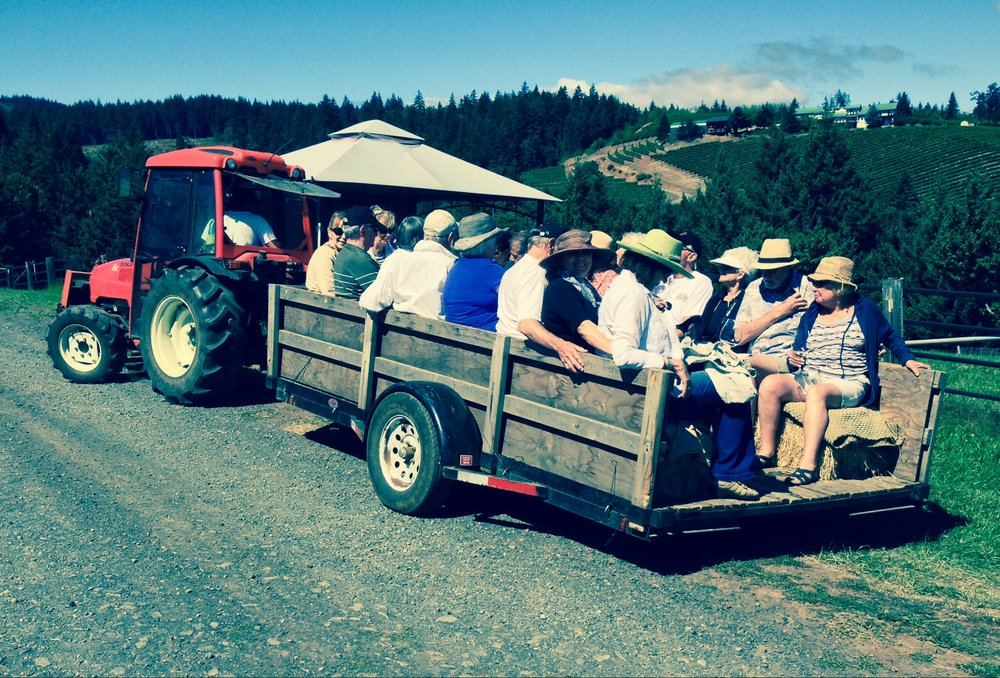 Our bus couldn't navigate the narrow dirt  road to the top of Phelps Creek Vineyard...