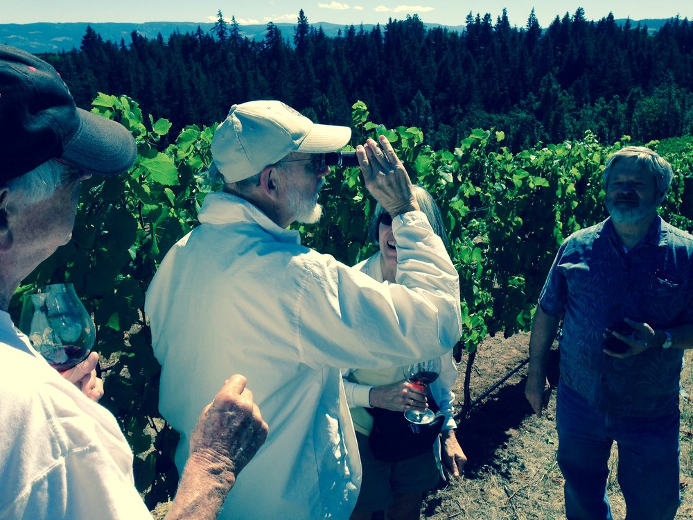 Learning how to use a refractometer to  check brix (sugar) levels in the vineyards at Phelps Creek.