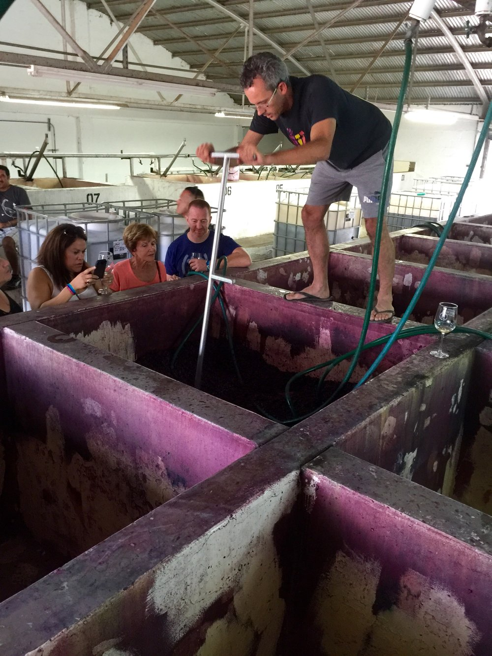 Thomas demonstrating a punch down in the concrete open-top fermenters at La Escuelita.