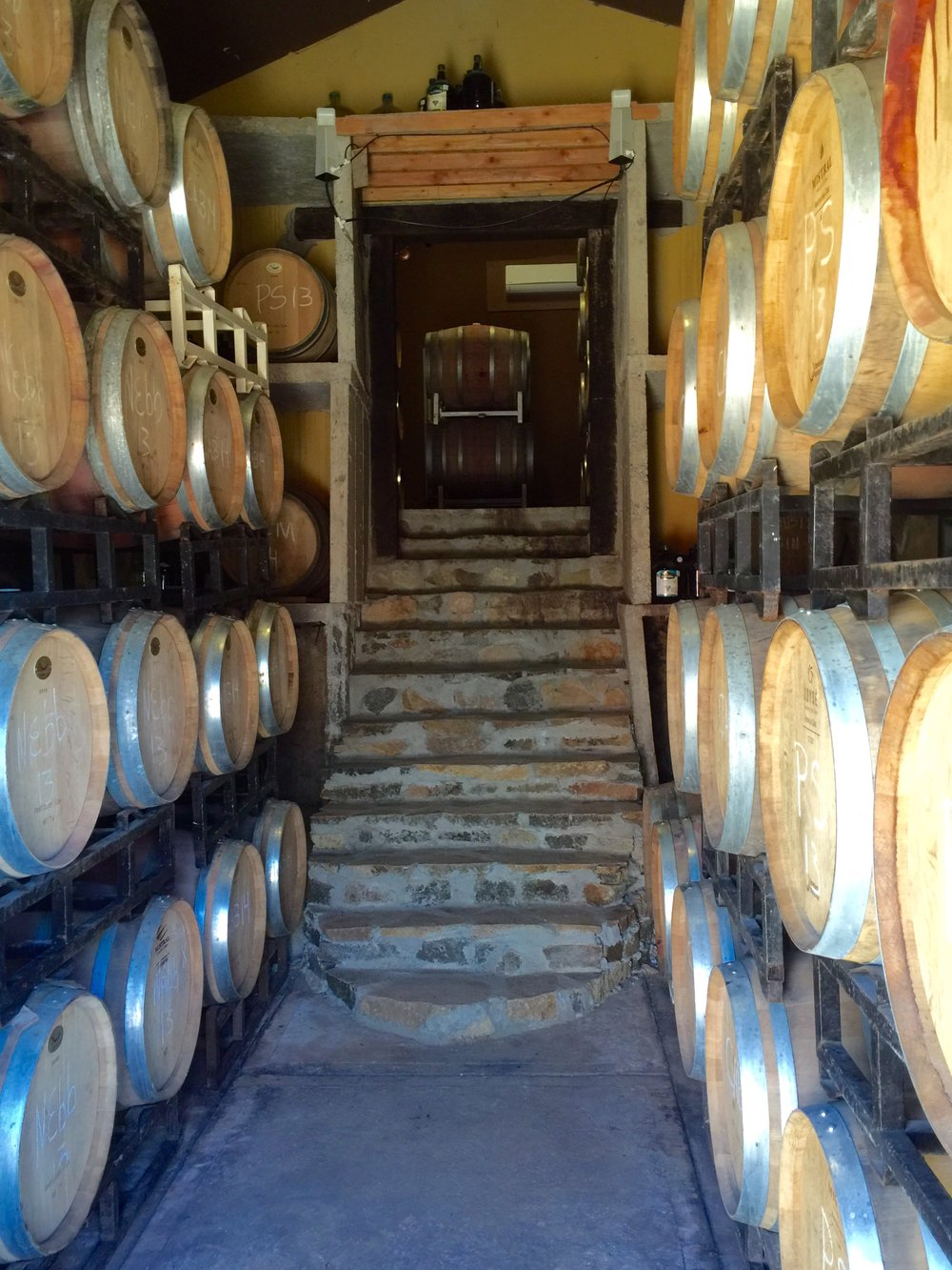 Barrel room at Cava Macial.