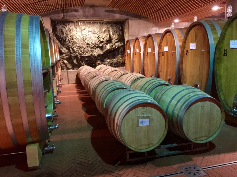 The underground barrel room at ColleMassari winery was dynamited out of  solid rock.