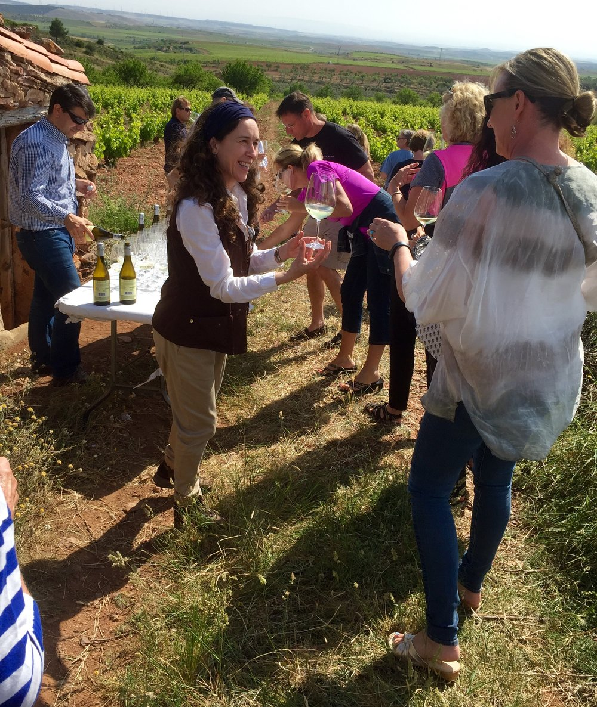 Vineyard trek in the Tabuenca vineyards of Campo Borja.