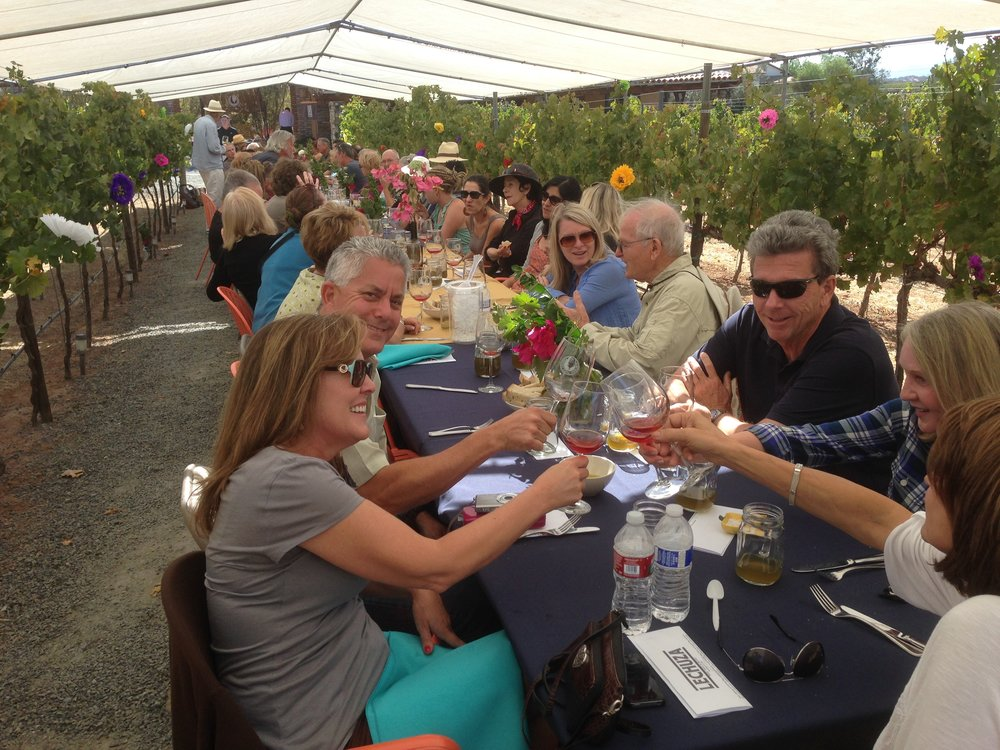 HOME PAGE - Lunch at Lechuza Vineyards.JPG