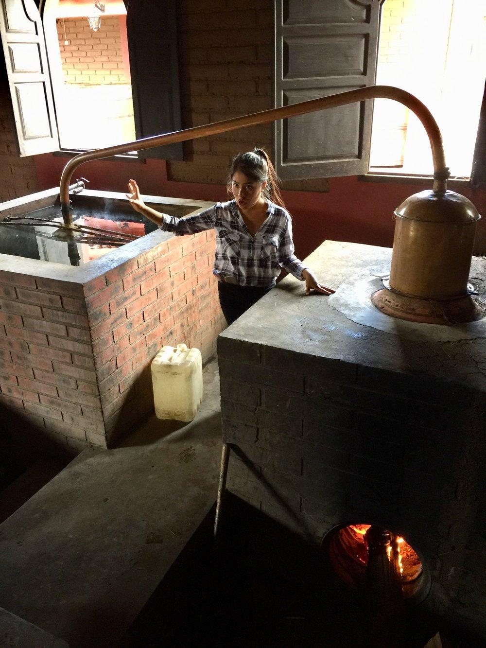 Low tech still at Mal de Amor Distillery.