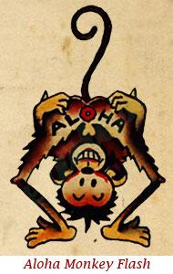 """Romeo, """"The Aloha Monkey"""""""