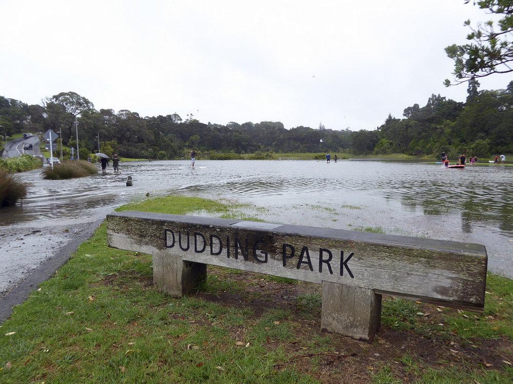 LSB-flooding-Dudding-Park-Jan-2018.jpg